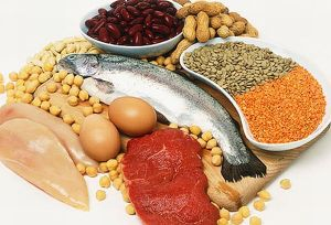 high_protein_sources